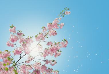 Bespaartip | Winter is zomer, profiteer nu voor volgend seizoen met Sale korting